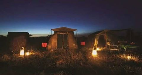 Semi-luxury camping safari in Tanzania